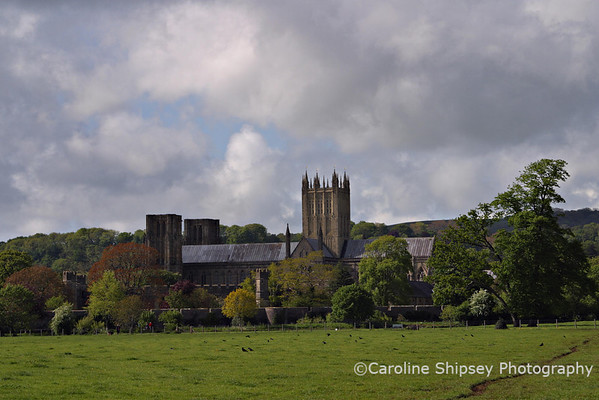 Wells Cathedral & Bishop's Palace from The Park