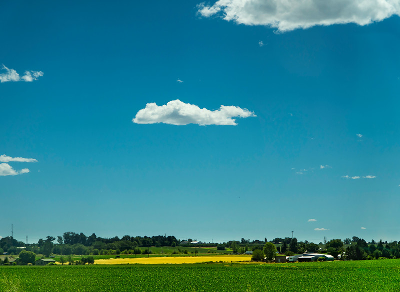 Idaho farms