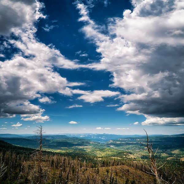 Cedar Mountain View