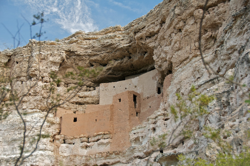 Montezuma's Castle (Anasazi Ruins)