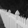 White Picket Fence around Alamo Cemetery