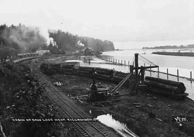 Trains brought logs from spur lines all along the Nehalem and Salmonberry Rivers.