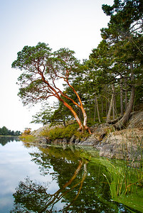 Cranberry Lake,