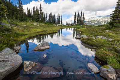 Harmony Trail Reflections -- Whistler Mountain, B.C.