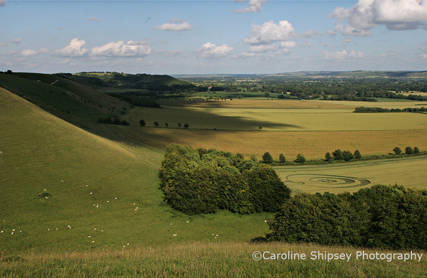 Crop Circle from Knap HIll ,Pewsey Vale, Wiltshire