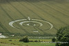 Crop Circle detail from Golden Ball Hill ,Pewsey Vale, Wiltshire