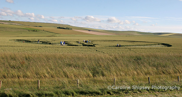 View of Crop Circle at West Kennet Long Barrow, there is not a view point on the ground which gives a good overall view of this formation ,Pewsey Vale, Wiltshire