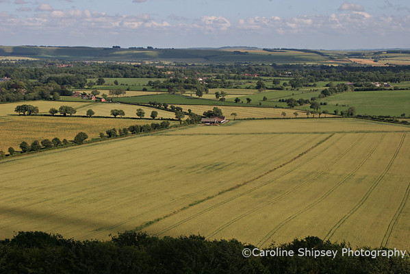 View from Golden Ball Hill 2 ,Pewsey Vale, Wiltshire