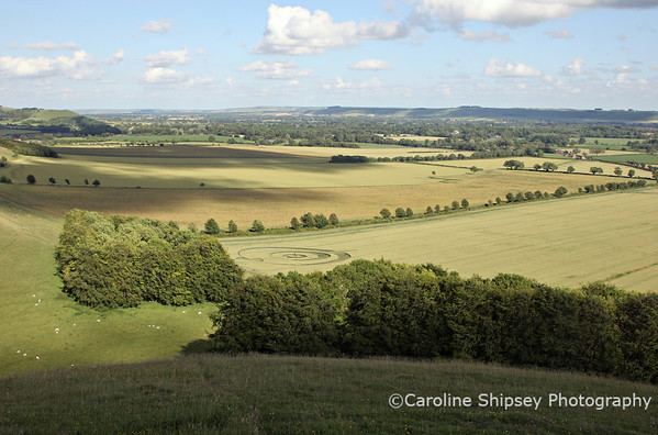 View from Golden Ball Hill including the Crop Circle, Pewsey Vale, Wiltshire