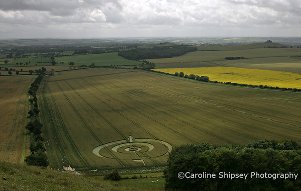 Crop Circle from Knap Hill 1 ,Pewsey Vale, Wiltshire