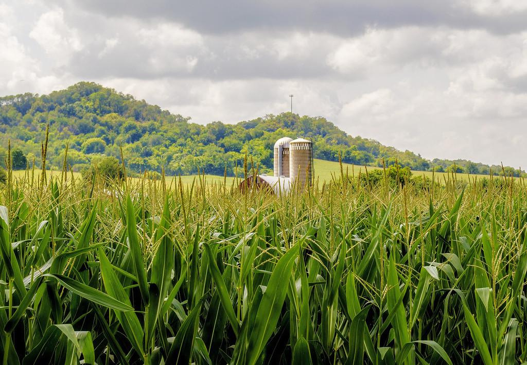 Rural Wisconsin. West Salem.