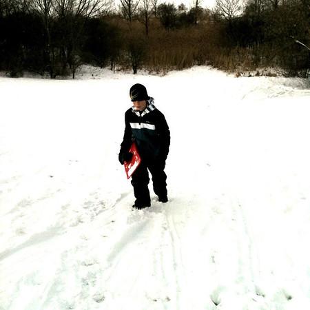Owen sledding