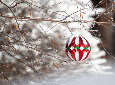 Urbandale Christmas decorations
