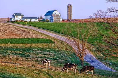Lafayette County 7