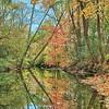 Fall Reflection