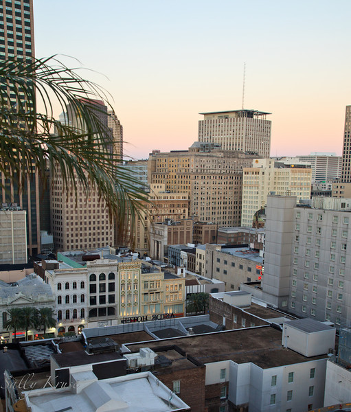 Daybreak view of the city of New Orleans from the rooftop of Hotel Monteleone.