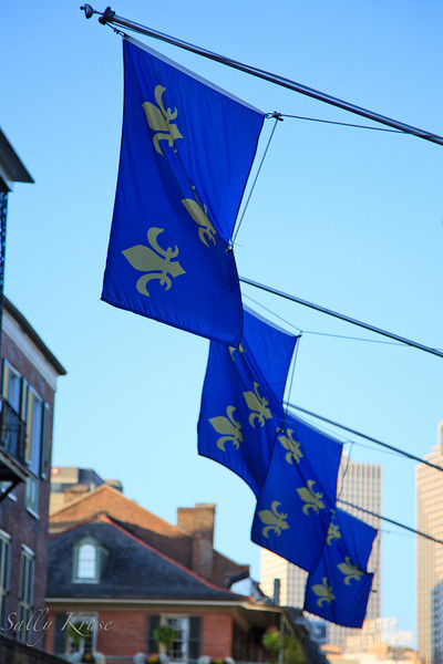 "Fleur-de-lis flags.  The fleur-de-lis has been widely used in New Orleans as a symbol of grassroots support for New Orleans recovery after ""Katrina""."