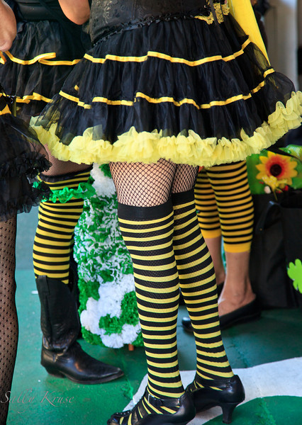 Bee's knees.  The lower portion of parade participants dressed as bees prior to one of the St. Patrick's Day parades in New Orleans.