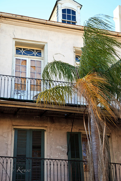 A damaged home and palm tree on Royal Street in New Orleans.