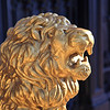 A stately gilded lion guarding the front entrance of a home in the Marigny/Bywater district, New Orleans.