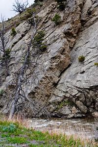 Gardner River area, Yellowstone NP