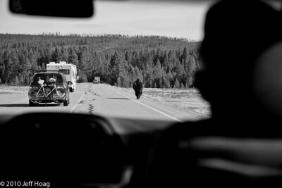 Near Gibbon River & Ice Lake, Yellowstone NP
