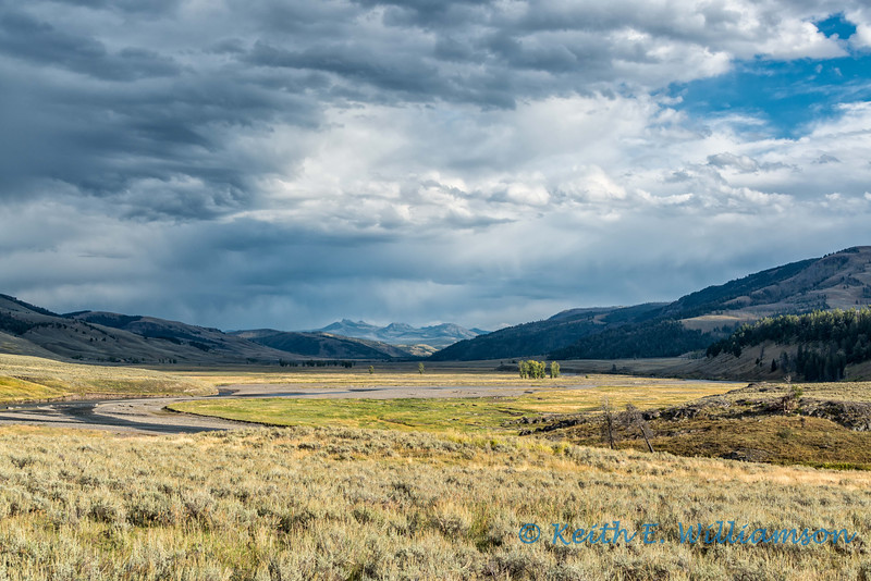 Lamar Valley, Yellowstone NP