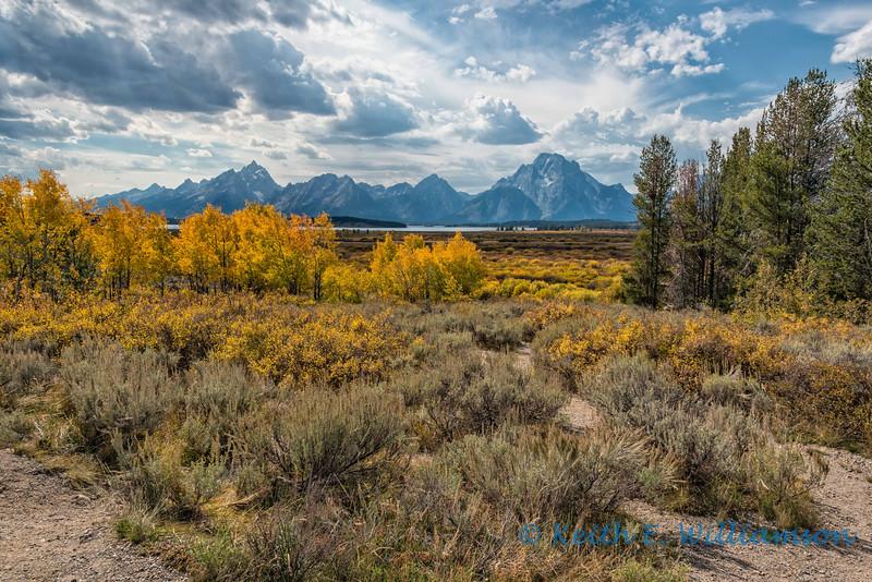 Fall at Grand Teton NP