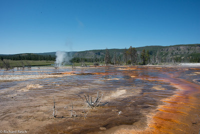 Upper & Lower Geyser Basins Yellowstone  7/10/13