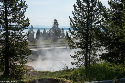 West Thumb Geyser Basin on the shore of Yellowstone Lake West Thumb Geyser Basin is one of the smallest geyser basins in Yellowstone yet its location along the shore of Yellow-stone Lake ranks it as the most scenic. West Thumb has less geyser activity than other basins. But West Thumb, for its size, has it all-hot springs, pools, mud pots, fumaroles and lake shore geysers. Since the mid 1970s, West Thumb has decreased in thermal activity. Some temperatures have cooled in the basin allowing large colonies of algae and cyanobacteria to grow. As a result, large newly-formed microbial mats flourish on the run-off channels and along the edges of pools.  7/11/13