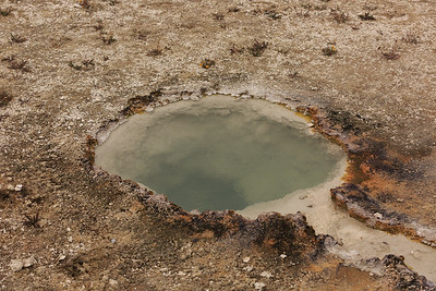 West Thumb Geyser Basin 004