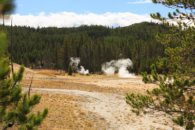 Firehole Lake Drive area 003