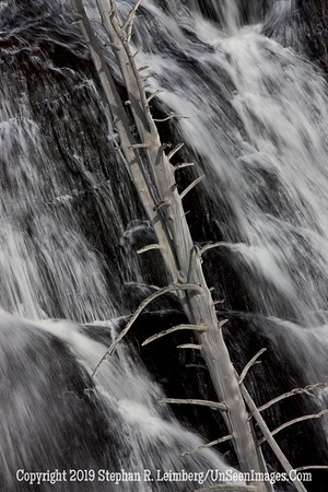 Waterfall and Branch _U0U0259 web