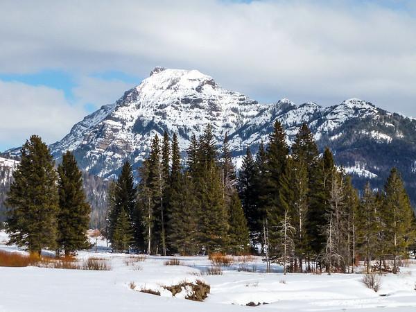 Yellowstone Winter-4