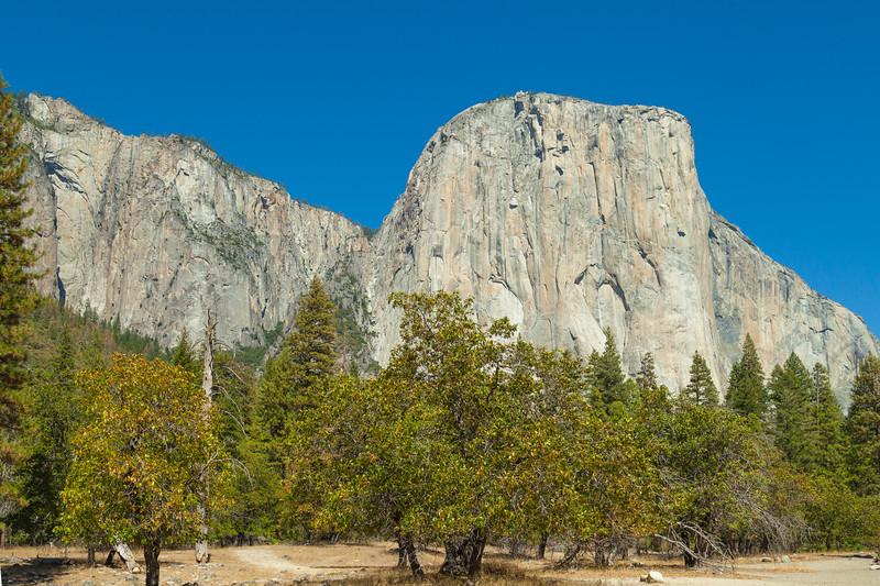 2015_9_25_27 San Fran and Yosemite-8103