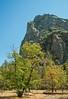 2015_9_25_27 San Fran and Yosemite-8115