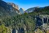 2015_9_25_27 San Fran and Yosemite-8010