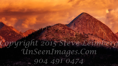 Sunny Side Up - Copyright 2015 Steve Leimberg - UnSeenImages Com _Z2A4079