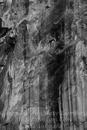 Climbing El Capitan - Copyright 2015 Steve Leimberg - UnSeenImages Com _M1A9450