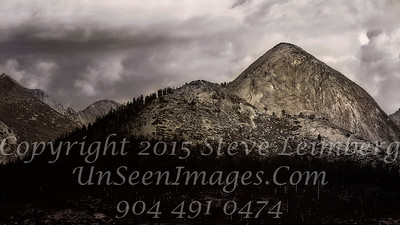 Sunny Side Up - B&W Copyright 2015 Steve Leimberg - UnSeenImages Com _Z2A4079