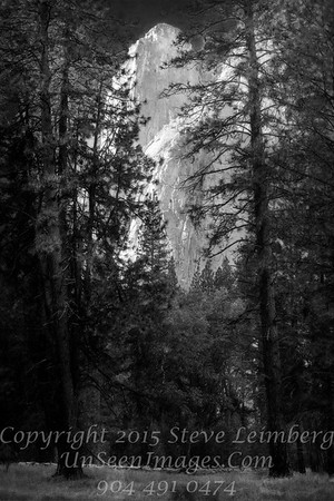 Half Dome Revisited - B&W Copyright 2015 Steve Leimberg - UnSeenImages Com _Z2A3852