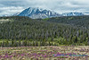 Near Haines Junction, Yukon