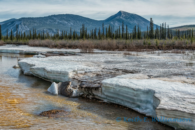 Late spring melt, Red Creek, Ogilvie Mountains, Yukon