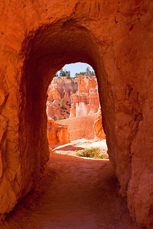 Bryce NP view