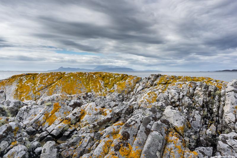 Smirisary lichen-stone-water