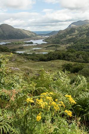 Lakes of Killarney National Park
