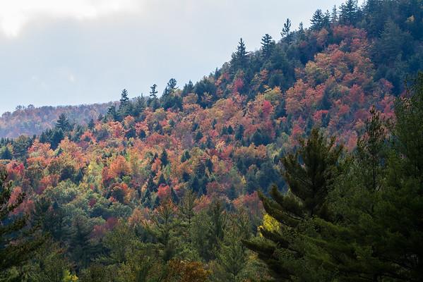 Adirondack colors