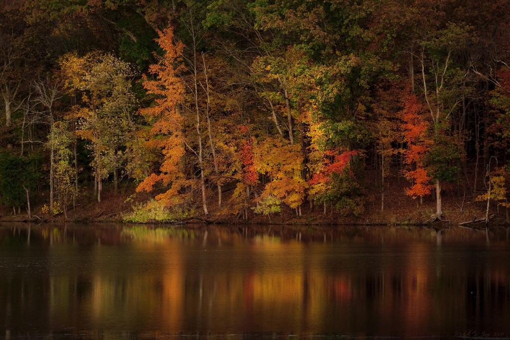 Radnor Lake, TN