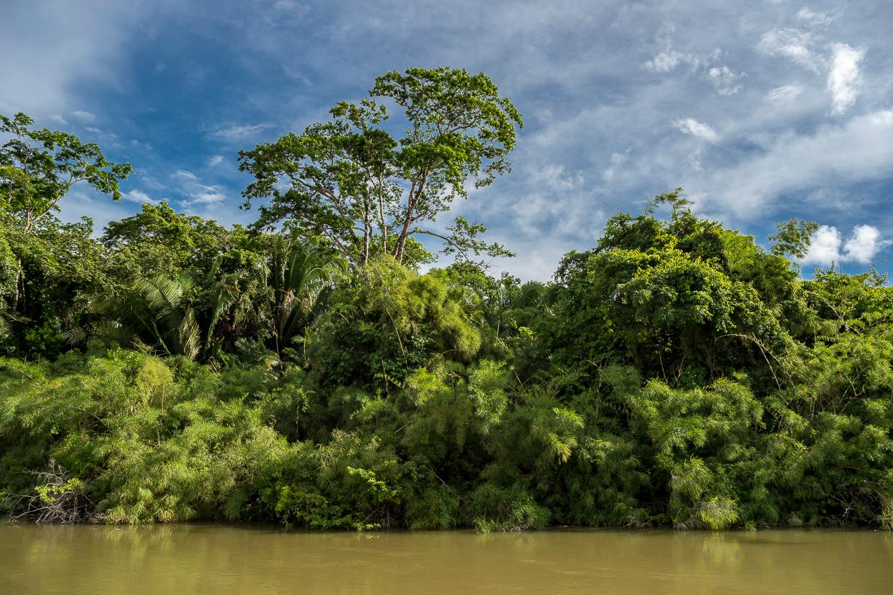 Belize River, Burrel Boom.