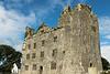 Leamaneagh Castle